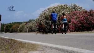 Eiland ontdekken op de E-fiets